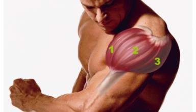 Mięśnie naramienne